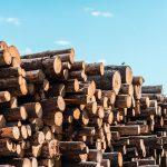 無垢材や集成材のメリット・デメリット!内装工事に使用する木材の種類