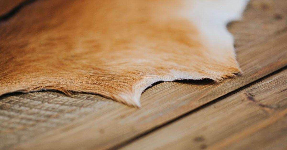 お店の床材選びに失敗しない重要なポイント!店舗改装と内装工事
